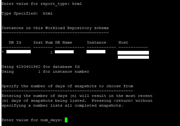 AWR Report Format