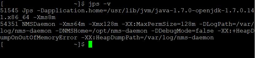 jps -v Command